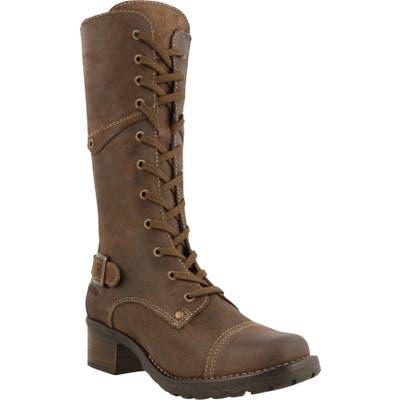 Taos Crave Tall Boot, Brown