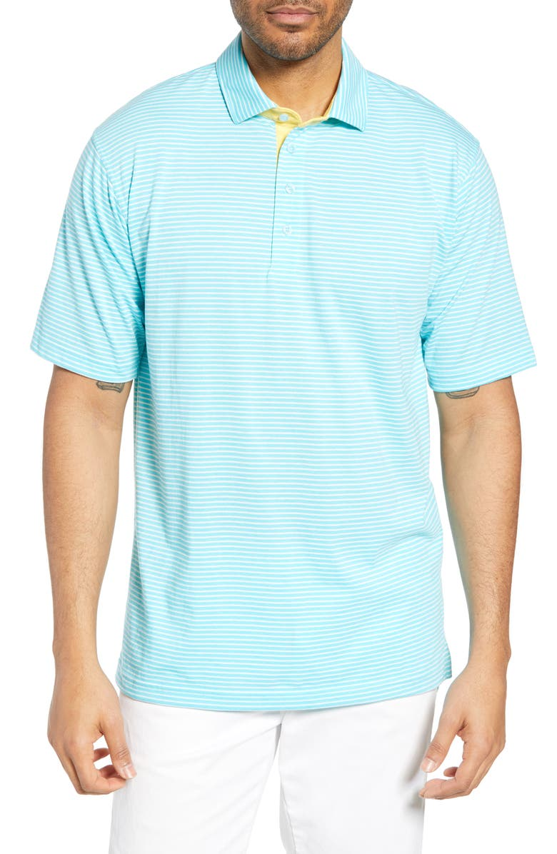 BOBBY JONES Stripe Leisure Polo, Main, color, 409