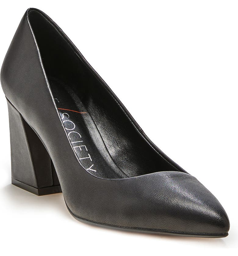 SOLE SOCIETY Capra Pointed Toe Pump, Main, color, BLACK LEATHER