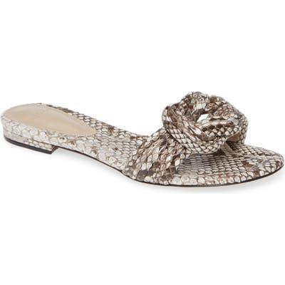 Alexandre Birman Vicky Knot Genuine Snakeskin Flat Sandal, Grey