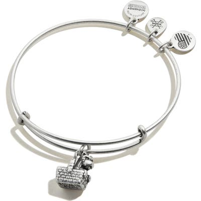 Alex And Ani Wizard Of Oz Toto Expandable Wire Bangle