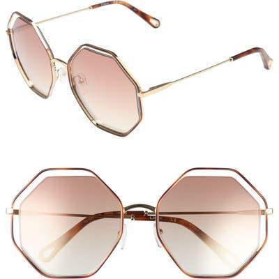 Chloe 5m Octagonal Halo Lens Sunglasses - Havana/ Bronze