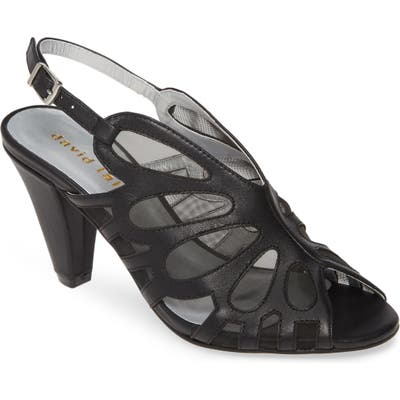 David Tate Marlena Butterfly Mesh Pump, Black