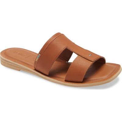 Toms Seacliff Slide Sandal, Brown