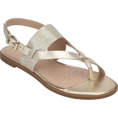 Evolve Avah Toe Loop Sandal- Metallic