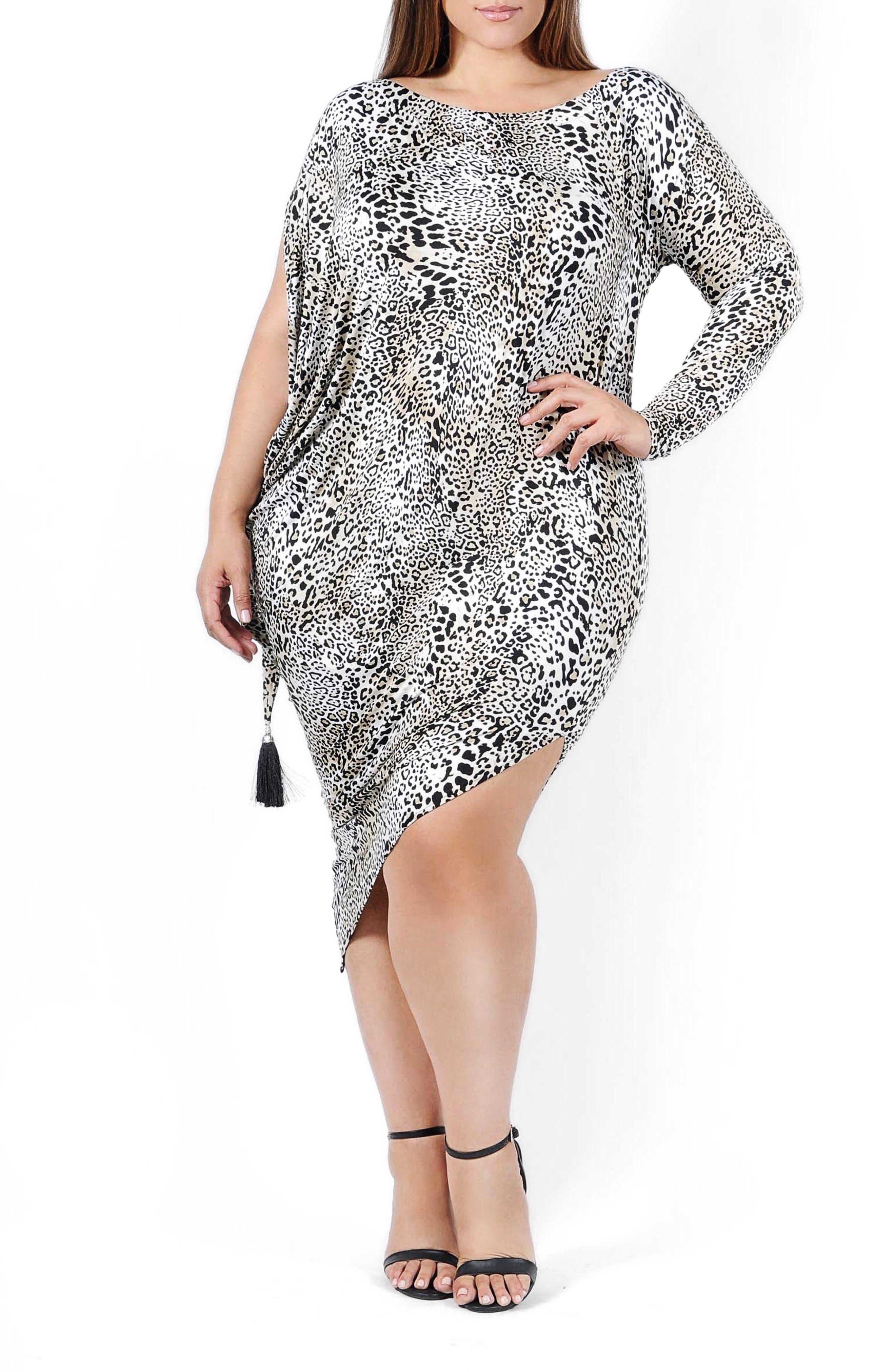 Jenny Print Long Sleeve Dress