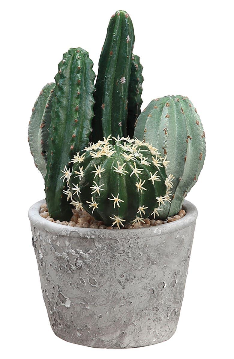 ALLSTATE Cactus Garden Decoration, Main, color, 358
