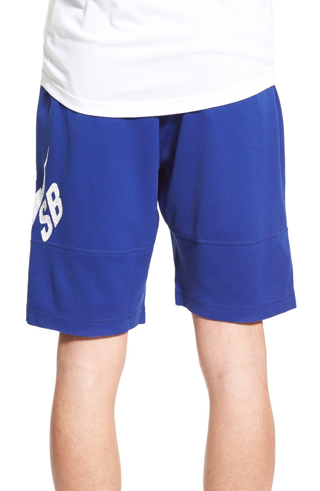 ,                             SB 'Sunday' Dri-FIT Shorts,                             Alternate thumbnail 12, color,                             455