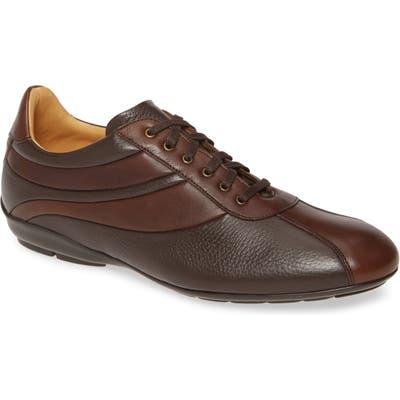 Mezlan Luka Sneaker, Brown