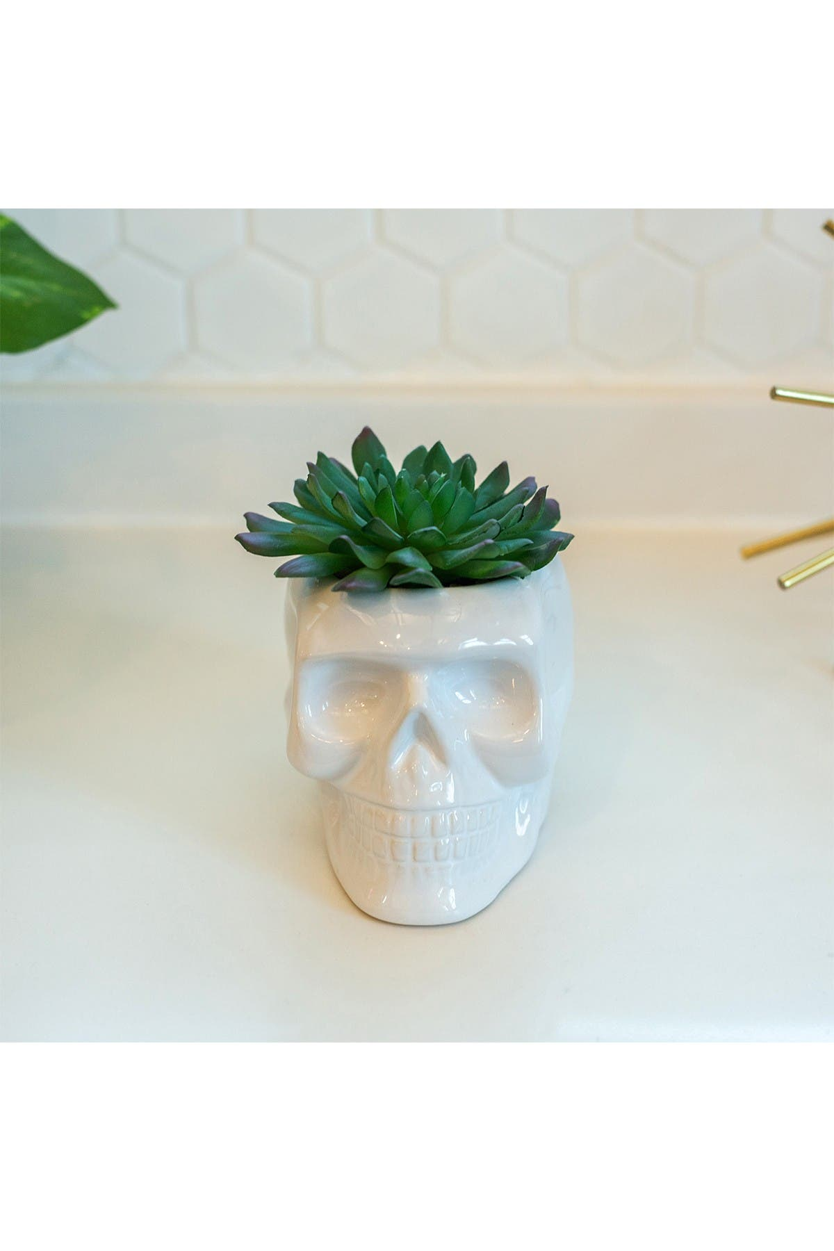 """Image of FLORA BUNDA 4.5"""" x 3.5"""" Ceramic Sugar Skull Succulent"""