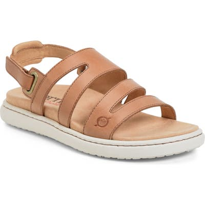 B?rn Dhyr Sandal, Brown