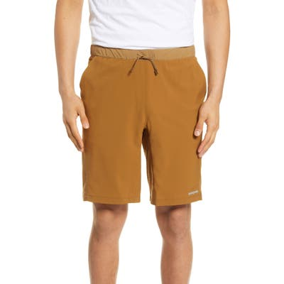 Patagonia Terrebonne Shorts, Brown
