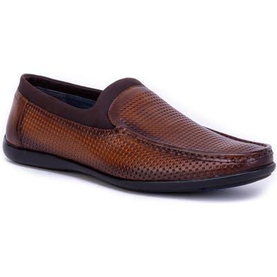 Zanzara Luc Driving Shoe- Brown