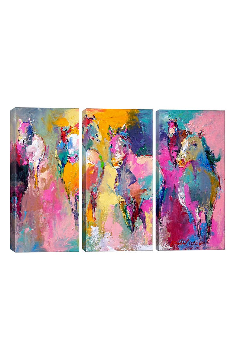 ICANVAS Wild by Richard Wallich Giclée Print Canvas Triptych, Main, color, ORANGE