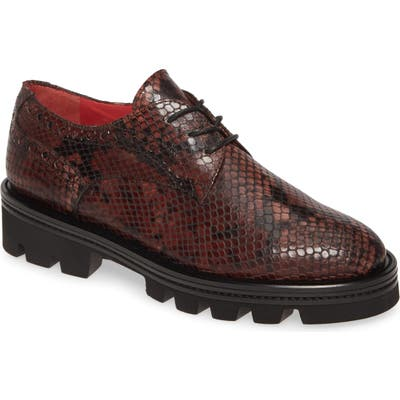 Pas De Rouge Lotty Snake Embossed Platform Derby, Brown