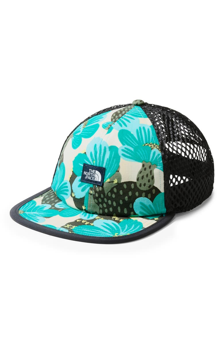 THE NORTH FACE Class V Trucker Hat, Main, color, MINTBLUEDE