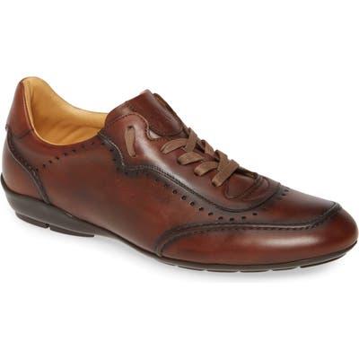 Mezlan Tivoli Sneaker, Brown