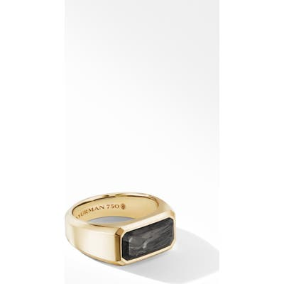 David Yurman Forged Carbon Signet Ring In 18K Yellow Gold
