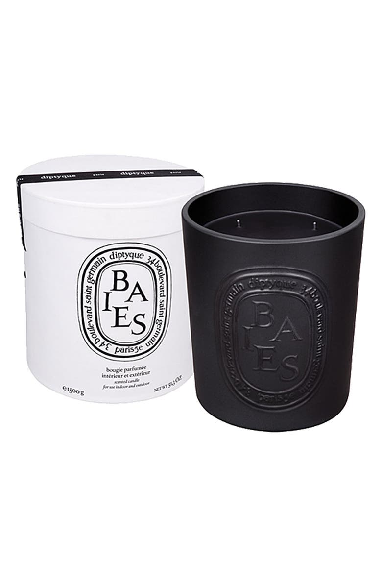 DIPTYQUE Baies/Berries Indoor & Outdoor Candle, Main, color, 000