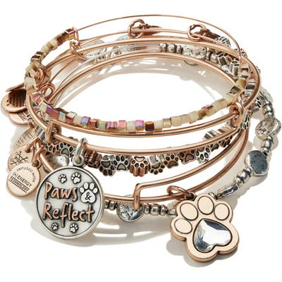 Alex And Ani Paws & Reflect Set Of 3 Expandable Wire Bangles