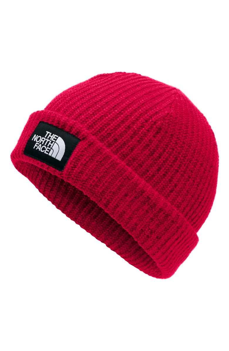 THE NORTH FACE Salty Dog Beanie, Main, color, 610
