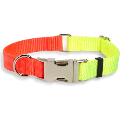 Ware Of The Dog Two-Tone Nylon Dog Collar, Yellow