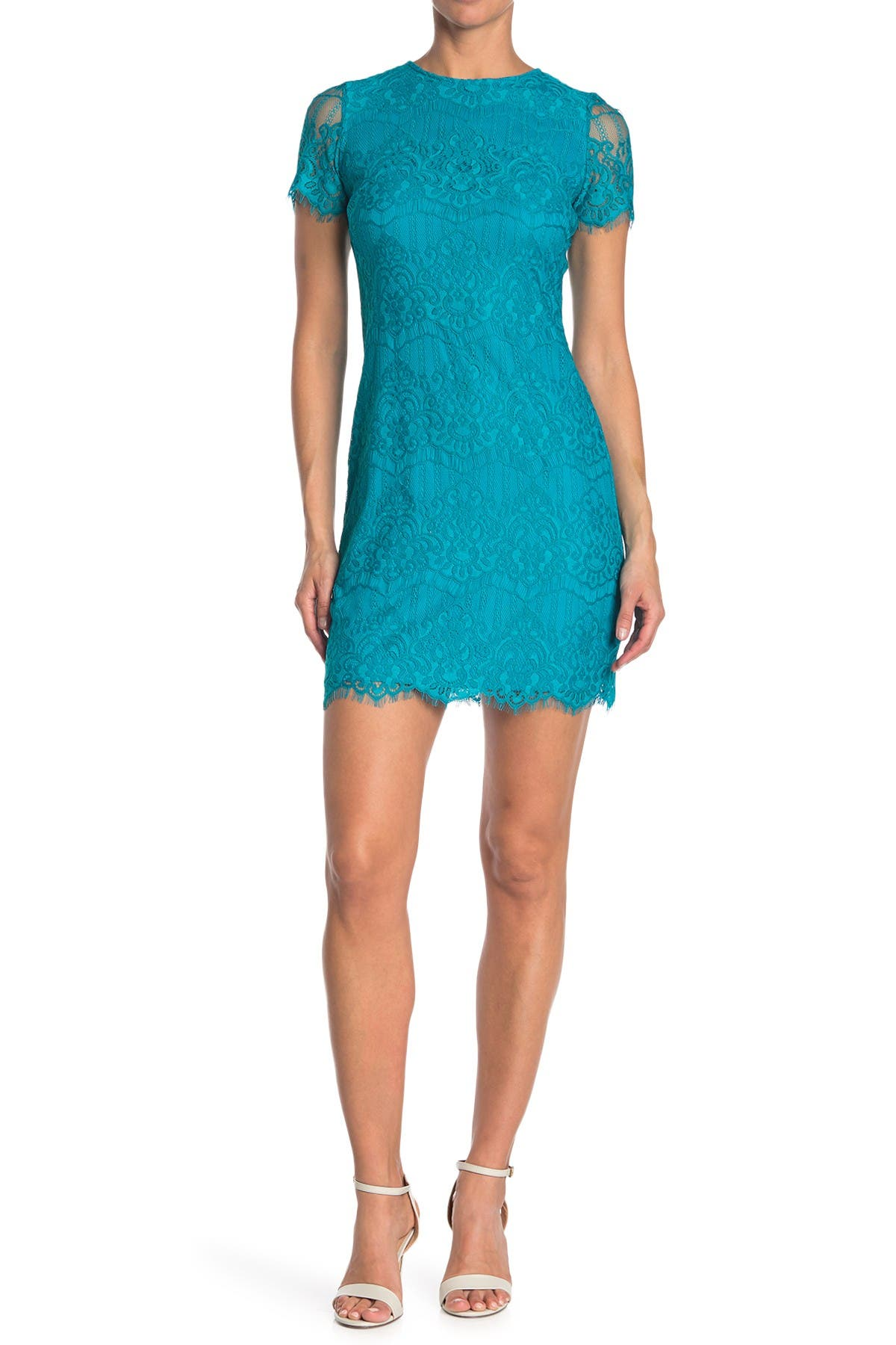 Image of Kensie Scalloped Short Sleeve Lace Dress