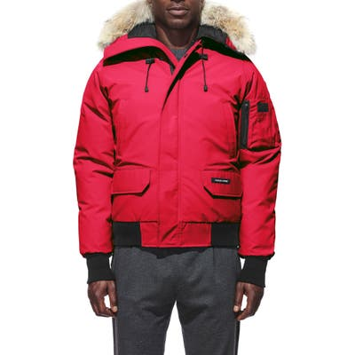 Canada Goose Chilliwack Down Bomber Jacket With Genuine Coyote Fur Trim, Red