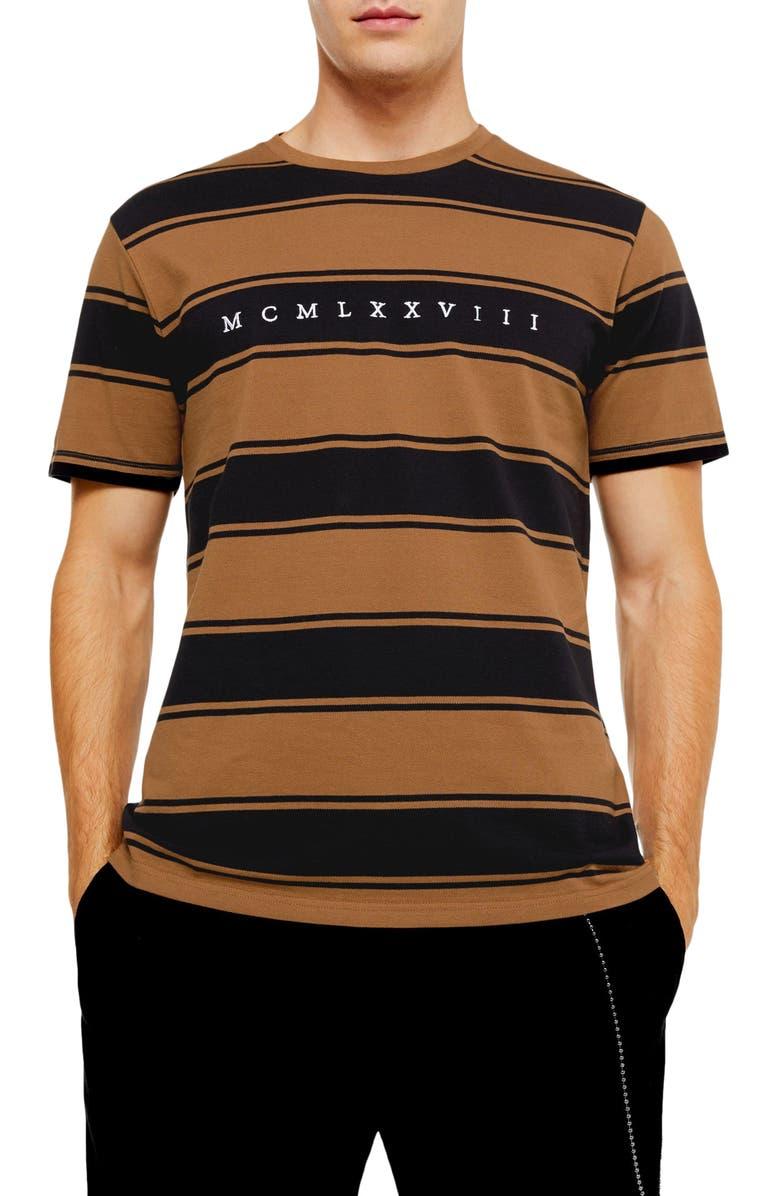 TOPMAN Embroidered Stripe Piqué Crewneck T-Shirt, Main, color, BROWN MULTI