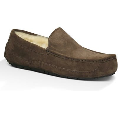 Ugg Ascot Slipper, Brown
