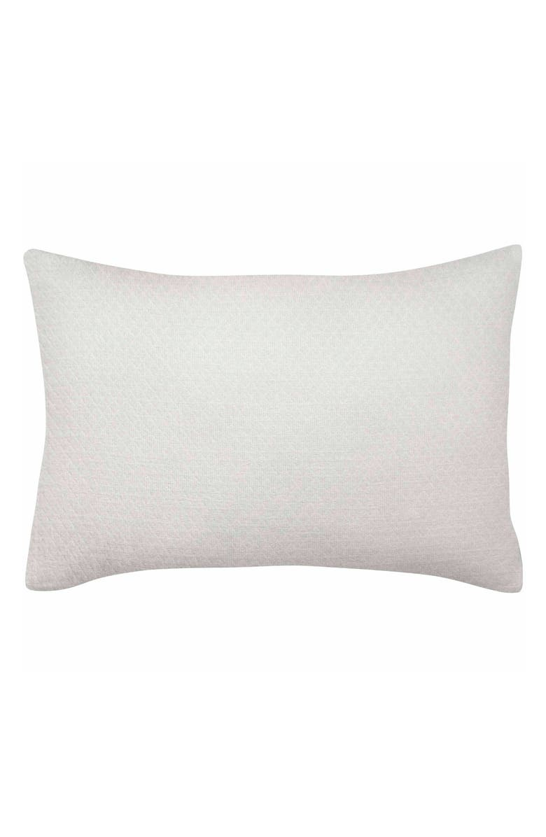ED ELLEN DEGENERES Vicente Breakfast Pillow, Main, color, 100