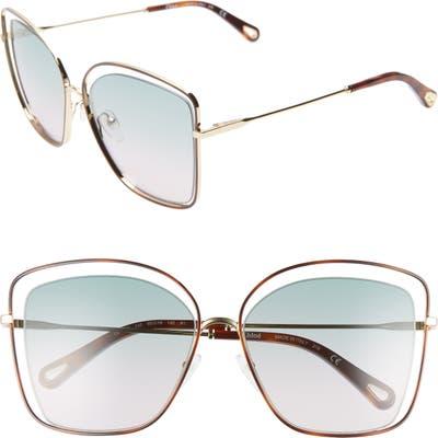 Chloe 60Mm Halo Frame Sunglasses - Havana/ Green Rose