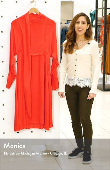 Long Sleeve Tie Neck Double Georgette Dress, sales video thumbnail