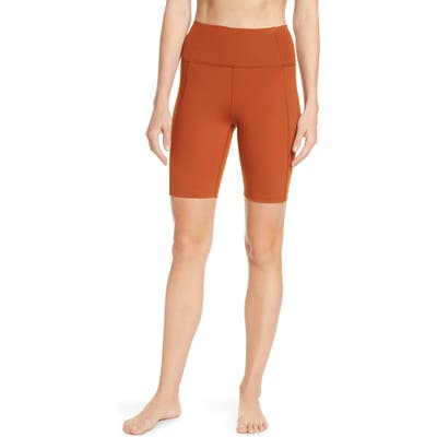 Plus Size Girlfriend Collective High Waist Bike Shorts, Brown