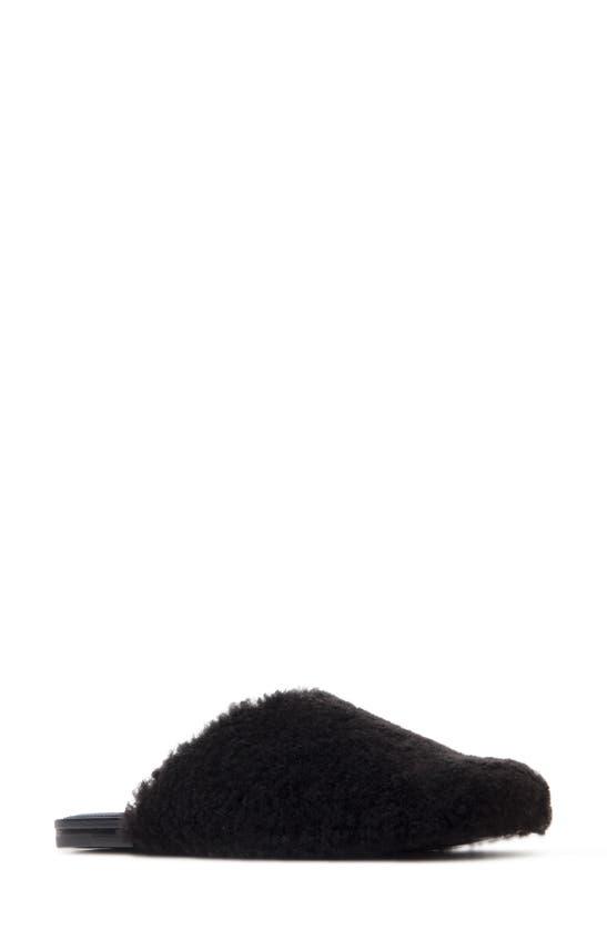Black Suede Studio HAILEY GENUINE SHEARLING MULE