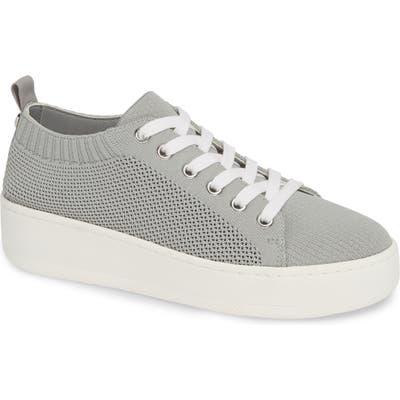 Steve Madden Bardo Sneaker, Grey