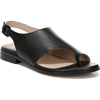 27 Edit Emma Toe Loop Sandal, Black