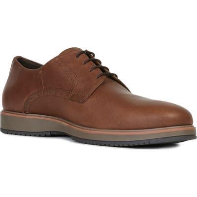 Geox Tyren Plain Toe Derby - Brown