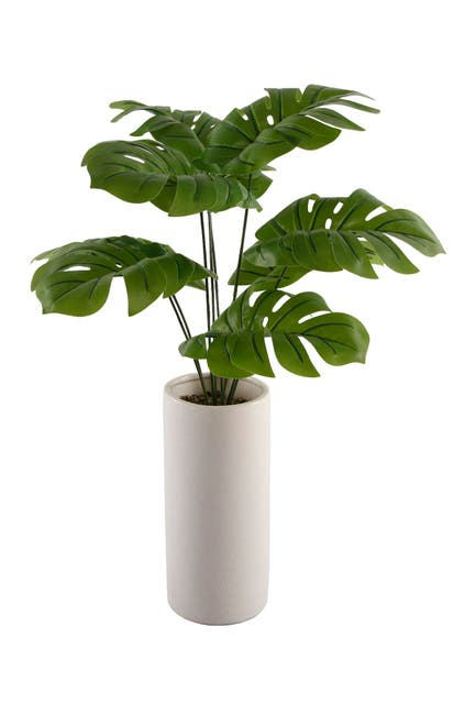 "Image of FLORA BUNDA 24"" Palm in 10.5"" Textured Ceramic Vase"