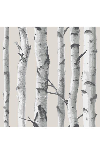 Image of WallPops! 'Birch Tree'  Peel & Stick Vinyl Wallpaper