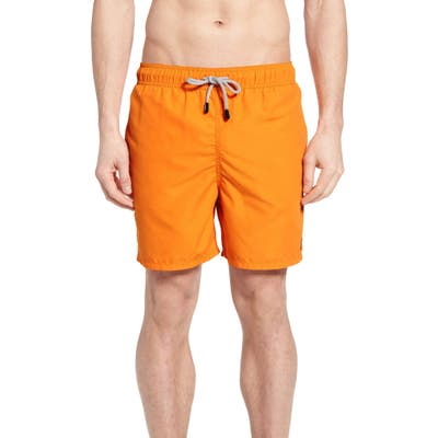 Tom & Teddy Swim Trunks