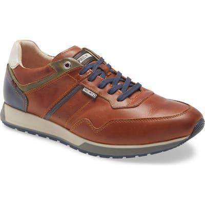 Pikolinos Cambil Sneaker - Brown