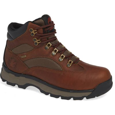 Timberland Chocorua Trail Gore-Tex Waterproof Hiking Boot