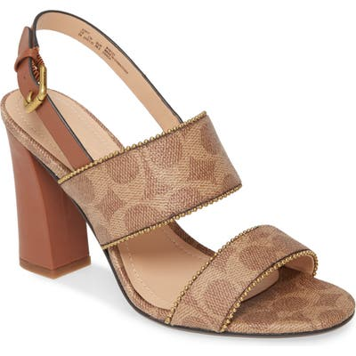 Coach Rylie Sandal, Brown