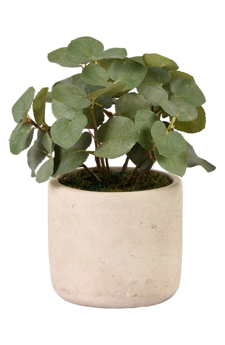 BLOOMR Eucalyptus Planter Decoration, Main, color, IVORY