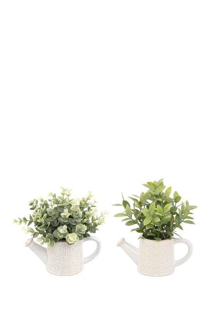 Image of FLORA BUNDA Eucalyptus & Tea leaf in Cathedral Watering Can, Set of 2