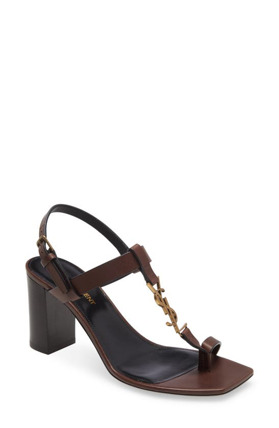 Saint Laurent Cassandra Ysl Logo T-strap Sandal In Brown