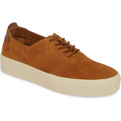 Frye Beacon Sneaker- Brown