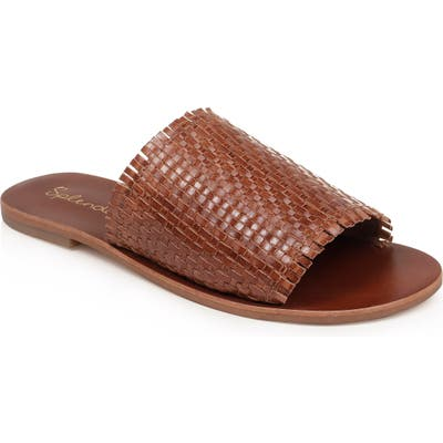 Splendid Truth Woven Slide Sandal, Brown