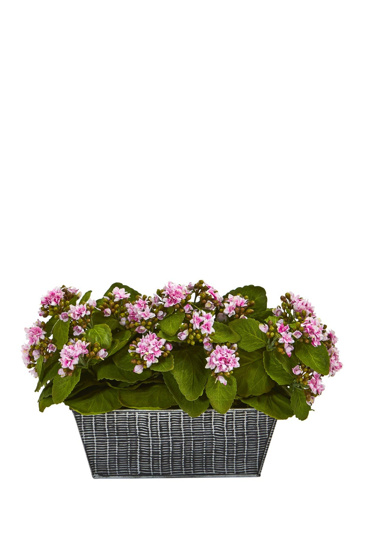 Nearly Natural Kalanchoe Artificial Plant In Black Embossed Planter Pink Nordstrom Rack
